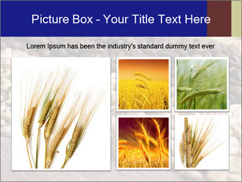 0000085380 PowerPoint Templates - Slide 19