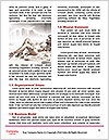 0000085382 Word Templates - Page 4