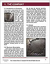 0000085384 Word Templates - Page 3