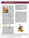 0000085385 Word Template - Page 3