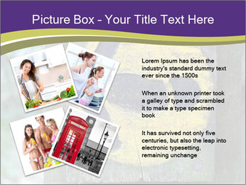 0000085386 PowerPoint Templates - Slide 23