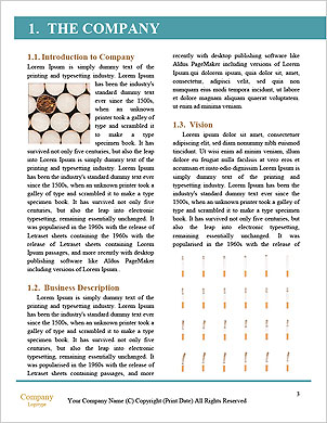 0000085394 Word Template - Page 3