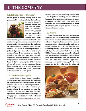 0000085396 Word Template - Page 3