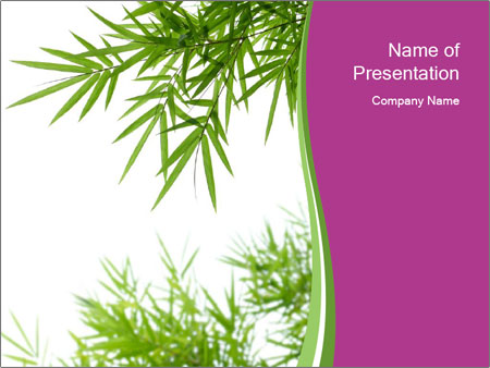 0000085398 PowerPoint Template