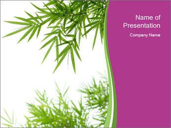 0000085398 PowerPoint Template - Slide 1