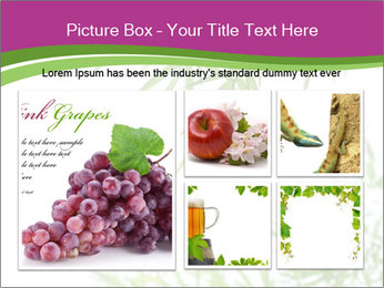 0000085398 PowerPoint Template - Slide 19