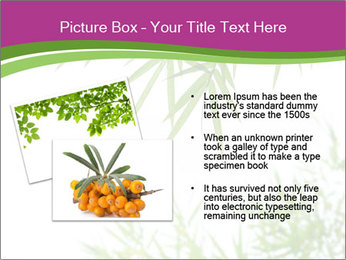 0000085398 PowerPoint Templates - Slide 20