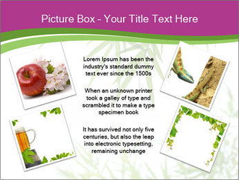 0000085398 PowerPoint Templates - Slide 24