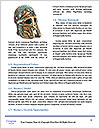 0000085399 Word Template - Page 4