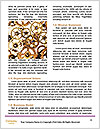 0000085412 Word Template - Page 4