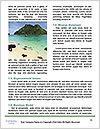 0000085413 Word Template - Page 4