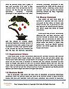 0000085429 Word Templates - Page 4