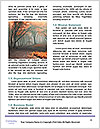 0000085434 Word Template - Page 4