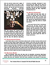 0000085438 Word Template - Page 4
