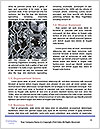 0000085441 Word Templates - Page 4