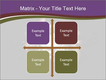 0000085445 PowerPoint Template - Slide 37