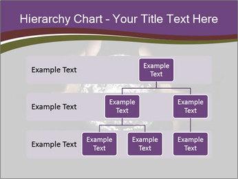 0000085445 PowerPoint Template - Slide 67