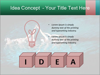 0000085453 PowerPoint Template - Slide 80