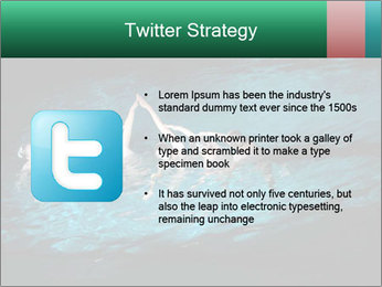 0000085453 PowerPoint Template - Slide 9