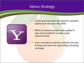 0000085455 PowerPoint Template - Slide 11
