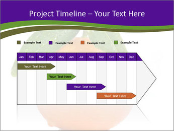 0000085455 PowerPoint Template - Slide 25