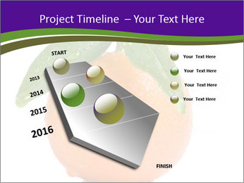 0000085455 PowerPoint Templates - Slide 26