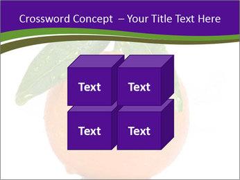 0000085455 PowerPoint Template - Slide 39