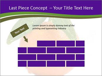 0000085455 PowerPoint Template - Slide 46