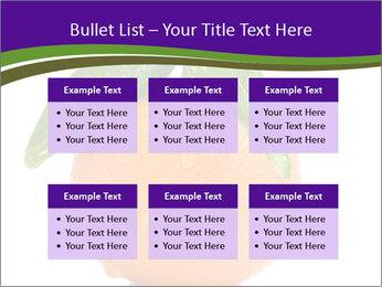 0000085455 PowerPoint Template - Slide 56