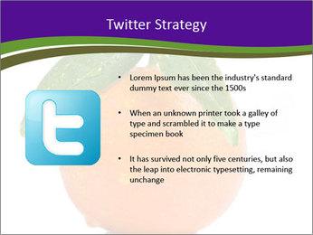 0000085455 PowerPoint Template - Slide 9