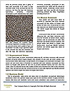 0000085459 Word Templates - Page 4