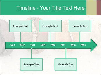 0000085467 PowerPoint Templates - Slide 28