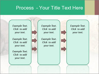 0000085467 PowerPoint Templates - Slide 86