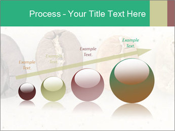 0000085467 PowerPoint Templates - Slide 87