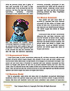 0000085468 Word Templates - Page 4