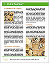 0000085471 Word Template - Page 3
