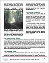 0000085480 Word Template - Page 4