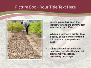 0000085481 PowerPoint Template - Slide 13