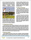 0000085484 Word Templates - Page 4