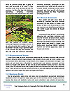 0000085485 Word Template - Page 4
