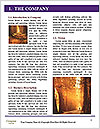 0000085492 Word Templates - Page 3