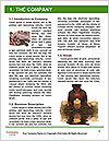 0000085497 Word Template - Page 3