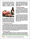 0000085497 Word Template - Page 4