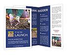 0000085501 Brochure Templates