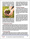 0000085501 Word Templates - Page 4