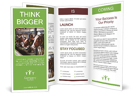 0000085514 Brochure Templates