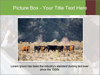 0000085514 PowerPoint Templates - Slide 15