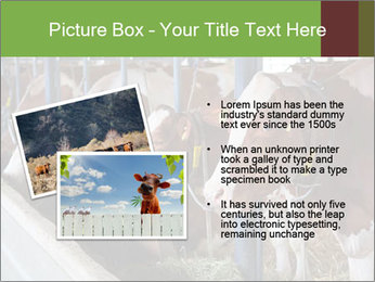 0000085514 PowerPoint Templates - Slide 20