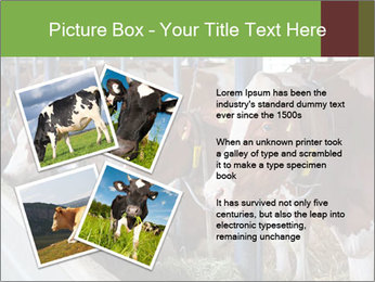 0000085514 PowerPoint Templates - Slide 23