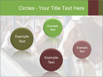 0000085514 PowerPoint Templates - Slide 77